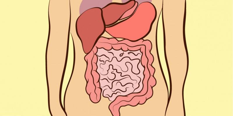 Местоположение боли в животе указывает на ее причину. Будьте осторожны, когда болит в верхней левой части!