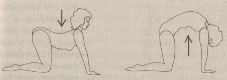 Упражнения, выравнивающие асимметрию тела: Статическая растяжка