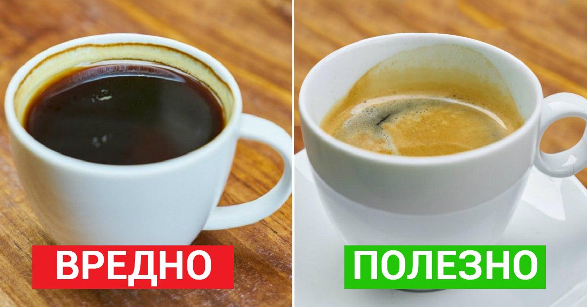 7 важных фактов, о которых должен знать каждый кофеман… Делай выводы лично!