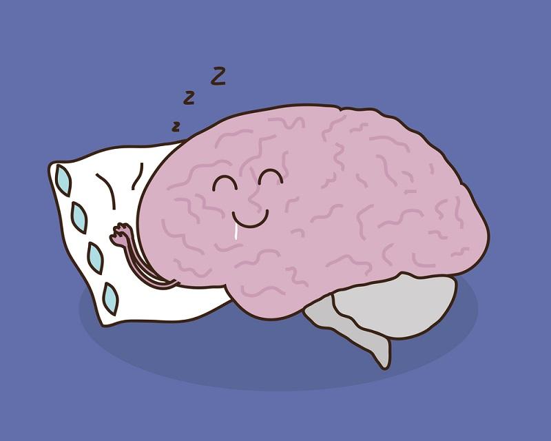 Нейрохирург из Румынии: «Мозг не любит жир, не любит соль. 2 раза в год, на праздники, можно!».