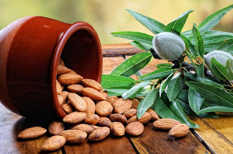 Грецкие орехи молочной спелости поправят здоровье на долгие годы!