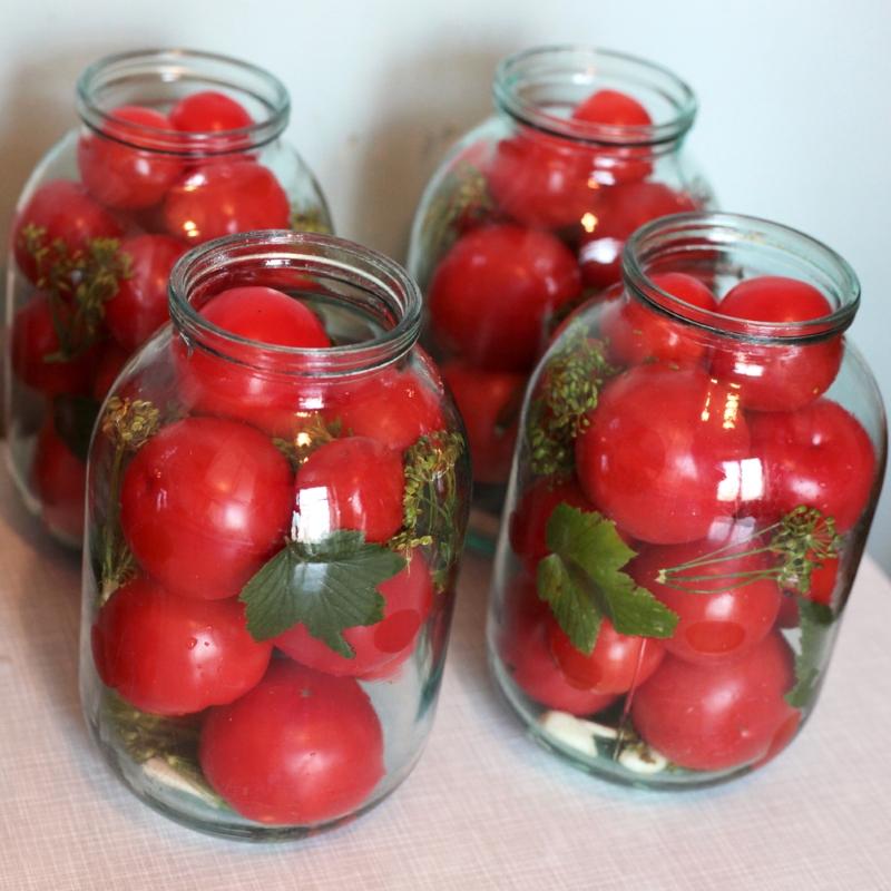 Быстрые малосольные помидоры «Аллегро»: еще свежих не наелись, но как же хочется таких, с жареной картошечкой!