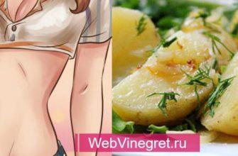 Ни дня без картошки! Популярная картофельная диета- Худеем на 2 кг за 3 дня!