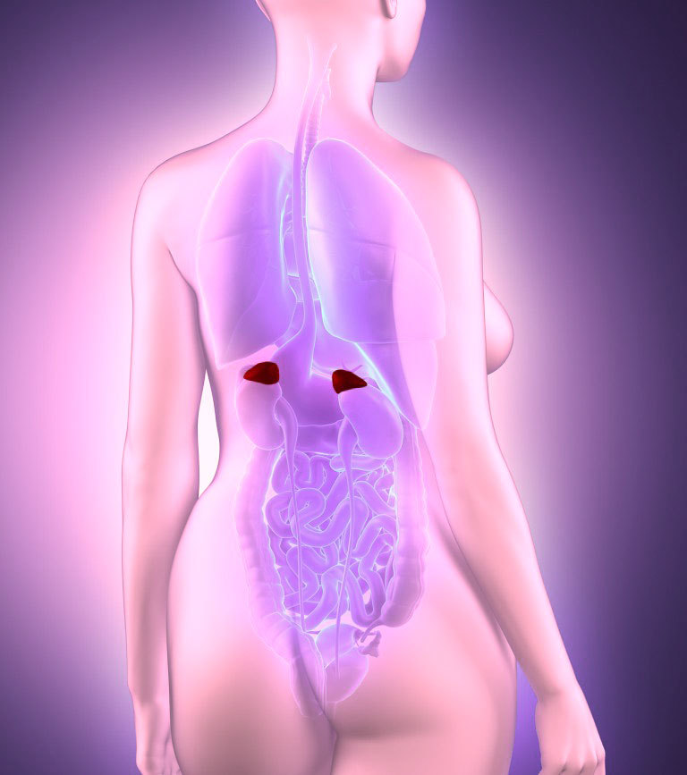 Гормональный БАЛАНС: Как привести гормоны в порядок с помощью питания